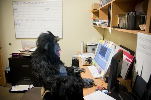 online writing blogging web
