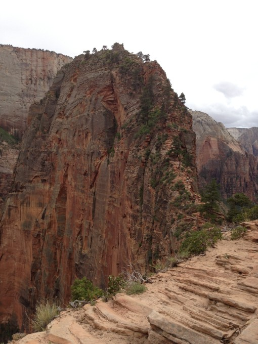 Proudest personal accomplishment: facing my fears and climbing to the top of Angels Landing, Zion National Park. This photo is taken from 2 miles up the trail at Scout Lookout. The last half mile is up that crazy fin to the narrow summit. I DID IT!!!!