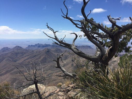 Inspiration - view from the South Rim, Chisos Mtns, Big Bend NP