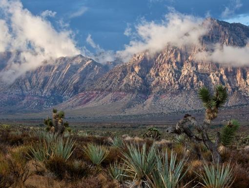 Desert outside Las Vegas - BLM