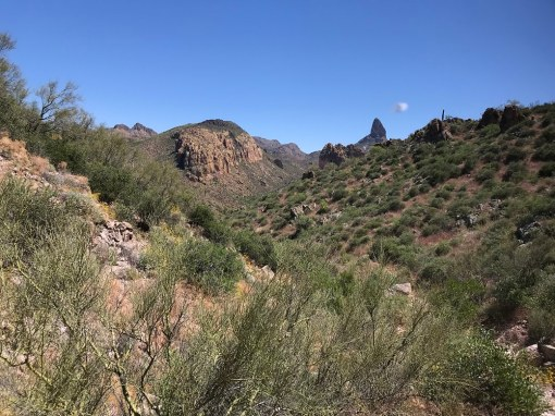 Superstition Mountains Wilderness, AZ - Free professional development resources and events for CAEs, association staff and others in the association community