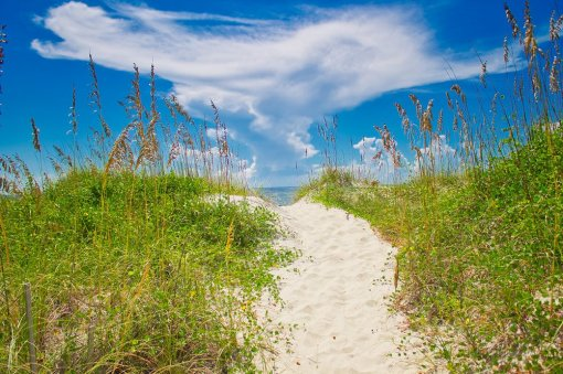 Ocean Isle Beach - Free professional development resources and events for CAEs, association staff and others in the association community