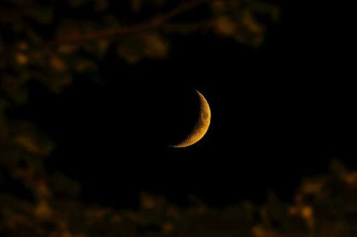 New moon – inspiration for a weekly list of free educational events and resources for the association management community