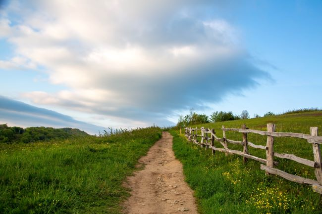 country road – inspiration for a weekly list of free educational events and resources for the association community