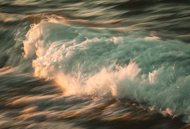 roaring surf - – inspiration for a weekly list of free educational events and resources for the association community
