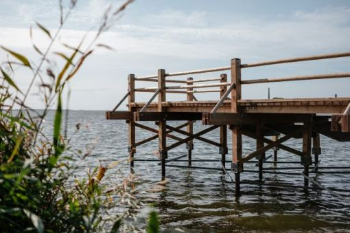 A dock on a body of water with tall grass in the foreground - inspiration for a weekly list of free educational events and resources for the association community